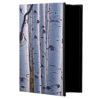 Aspens In Gunnison National Park Case For iPad Air