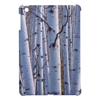 Aspens In Gunnison National Park iPad Mini Covers