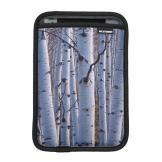Aspens In Gunnison National Park iPad Mini Sleeve