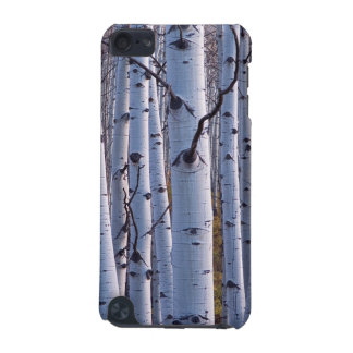 Aspens In Gunnison National Park iPod Touch (5th Generation) Cases