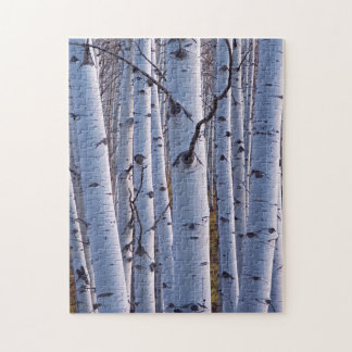 Aspens In Gunnison National Park Jigsaw Puzzle