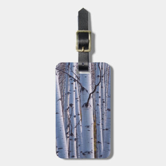 Aspens In Gunnison National Park Luggage Tag