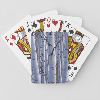 Aspens In Gunnison National Park Playing Cards