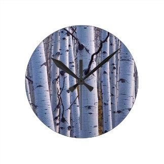 Aspens In Gunnison National Park Round Clock