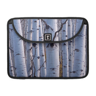 Aspens In Gunnison National Park Sleeve For MacBook Pro