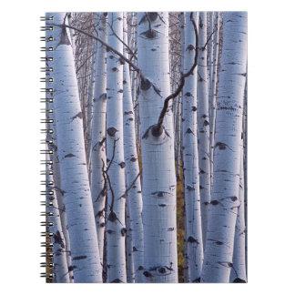 Aspens In Gunnison National Park Spiral Notebook