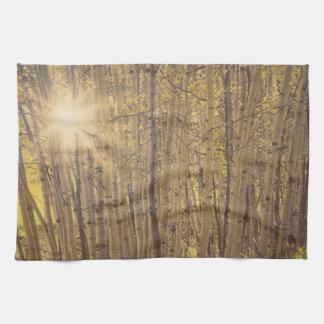 Aspens in Summer Tree Landscape Kitchen Towel