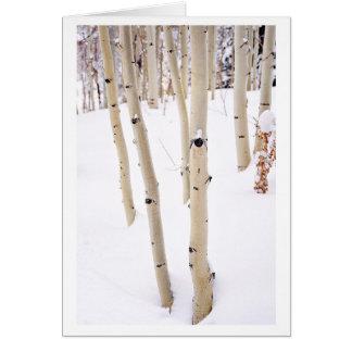 Aspens in the Snow, Telluride CO Card