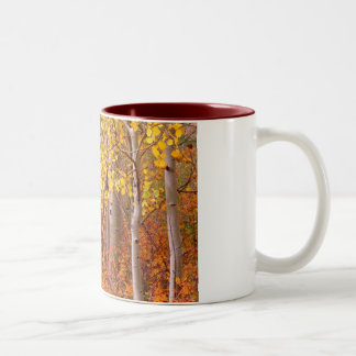 Aspens of New Mexico Two-Tone Coffee Mug