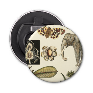 Assorted Animals Painted on Cream Background Bottle Opener
