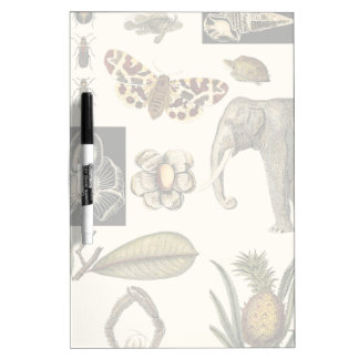 Assorted Animals Painted on Cream Background Dry Erase Board