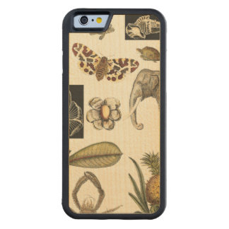 Assorted Animals Painted on Cream Background Maple iPhone 6 Bumper