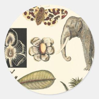 Assorted Animals Painted on Cream Background Round Sticker