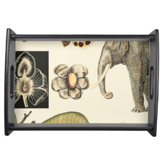 Assorted Animals Painted on Cream Background Serving Tray