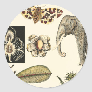 Assorted Animals Painted on Cream Background Round Stickers