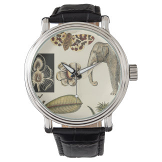 Assorted Animals Painted on Cream Background Watch