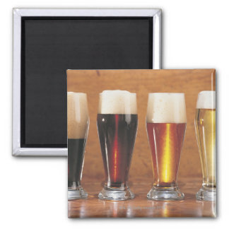 Assorted beers and ales magnet