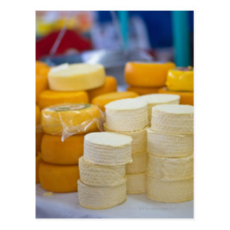 Assorted cheeses postcard