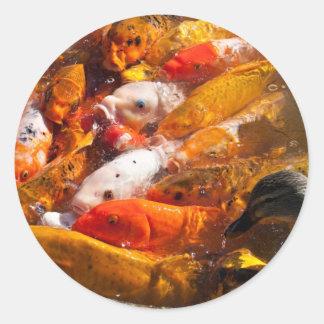assorted fish sticker