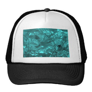 ASSORTED FLORALS HAT
