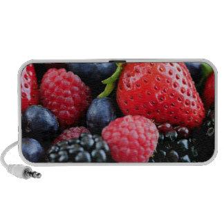 Assorted fresh berries travelling speakers