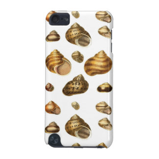Assorted sea shells, snails and marine creatures iPod touch (5th generation) cover