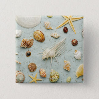 Assorted seashells on blue background 15 cm square badge