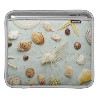 Assorted seashells on blue background iPad sleeve