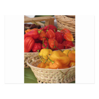 Assortment of colorful chilli peppers postcard