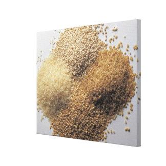 Assortment of grains canvas print