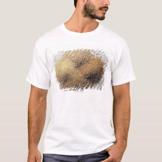 Assortment of grains T-Shirt