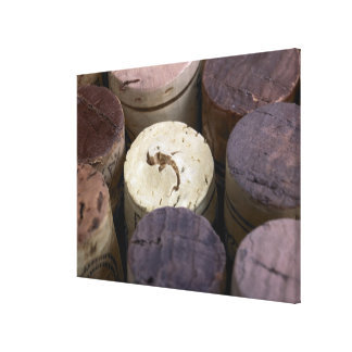Assortment of used corks, macro. The corks have Stretched Canvas Print