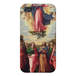 Assumption of the Virgin iPhone 4/4S Case