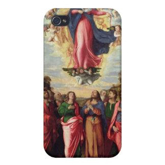 Assumption of the Virgin iPhone 4/4S Case