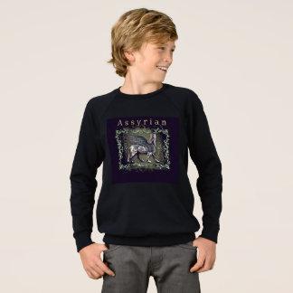 Assyrian Kids' American Apparel Raglan Sweatshirt