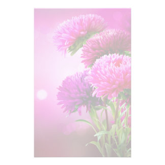 Aster Autumn Flowers Art Design Stationery