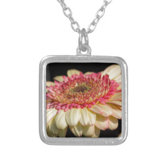 aster flower in the garden silver plated necklace