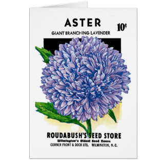 Aster Vintage Seed Packet Card