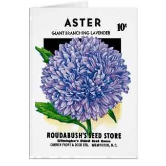 Aster Vintage Seed Packet Greeting Card