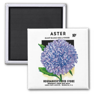 Aster Vintage Seed Packet Square Magnet