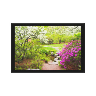 Asticou Azelea Garden In Spring, Northeast Harbor Stretched Canvas Prints