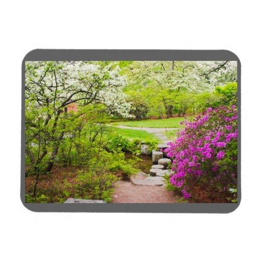 Asticou Azelea Garden In Spring, Northeast Harbor Vinyl Magnet