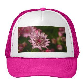 Astrantia Mesh Hat