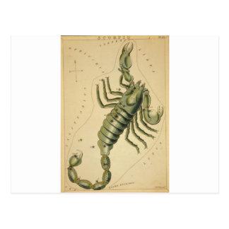 astrological_sign_scorpio_2 postcard