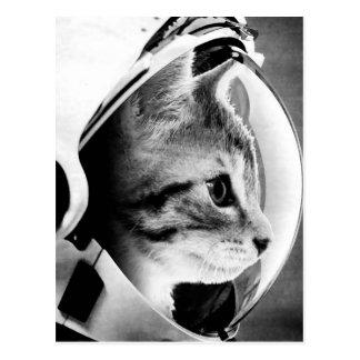 Astronaut Cat #3 Postcard