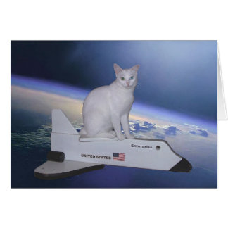 Astronaut Cat (Spirit) on Space Shuttle Card