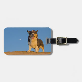 Astronaut Dreaming Luggage Tag