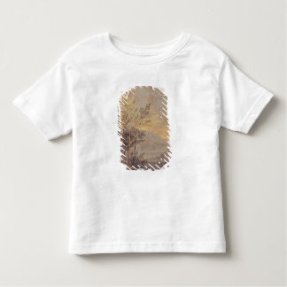 Astronomical Observations 2 Toddler T-Shirt