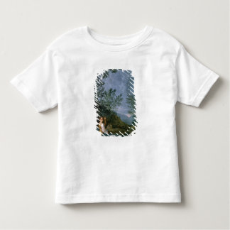 Astronomical Observations Toddler T-Shirt