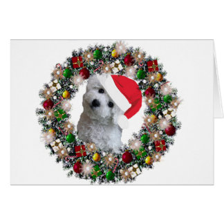 At Christmas - Bichon Frise Card